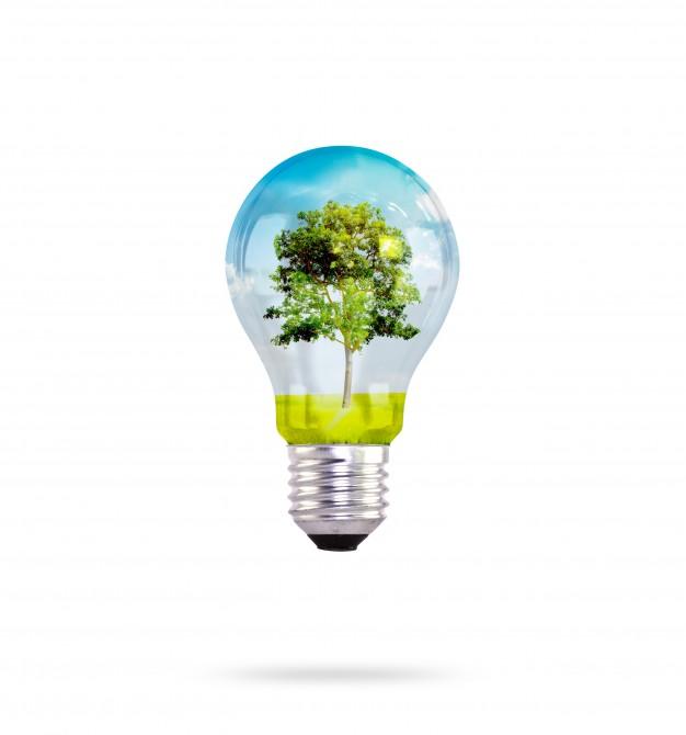 ampoule-arbre-interieur_1232-2102
